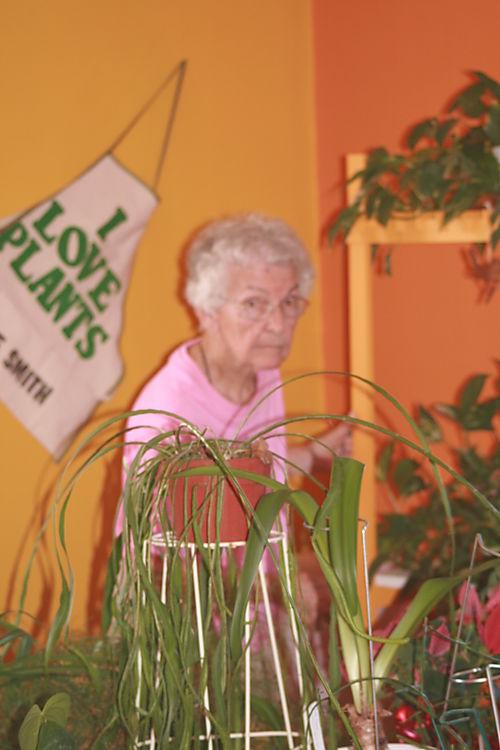 Ma's plant room
