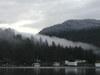 Cold_fog_light_snow_garden_bay_42