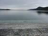 Shell_beach_montague_marine_park_lo