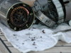 Hitachi_starter_motor_after_679_hou