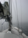 Heavy_fog_offshore_of_eureka_ca_816